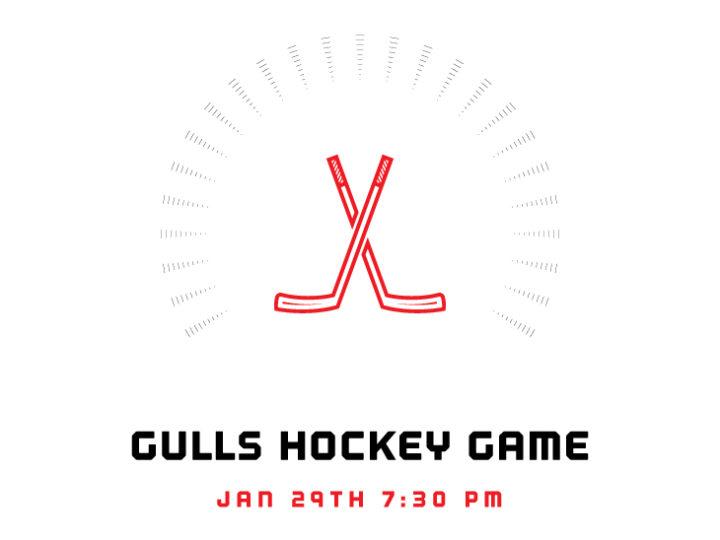 Gulls Game Fundraiser