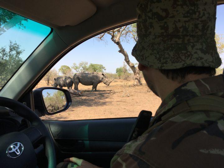 Operation Rhino Shield 2017