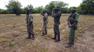 Anti poaching scouts