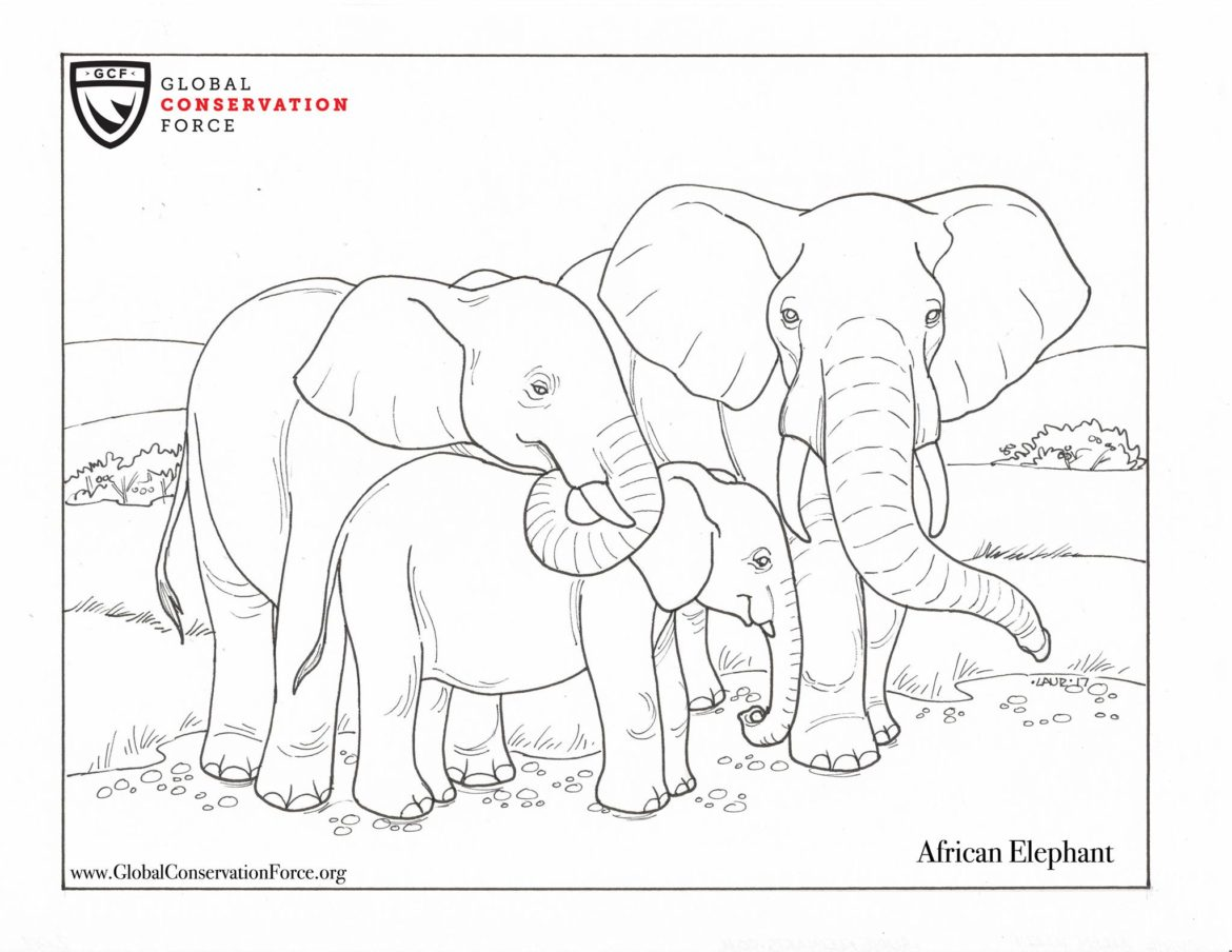 check out our new animal themed coloring pages global
