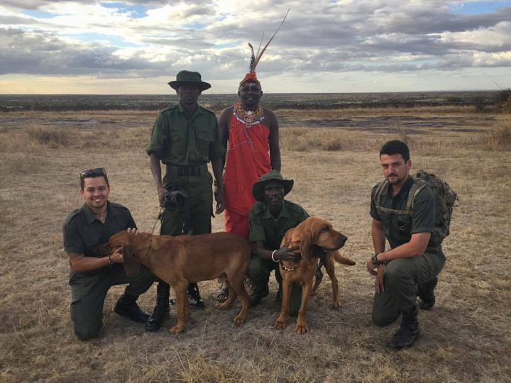 Dog Walk for a Cause – K9 Anti-Poaching Unit Fundraiser