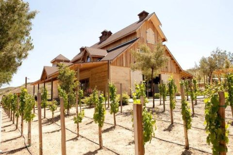 a natural wood barn-like structure in a vineyard