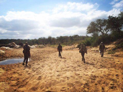 four rangers walking through sand