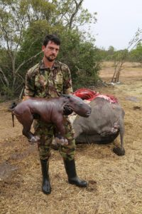 Calvin Kipling Rhino Necropsy