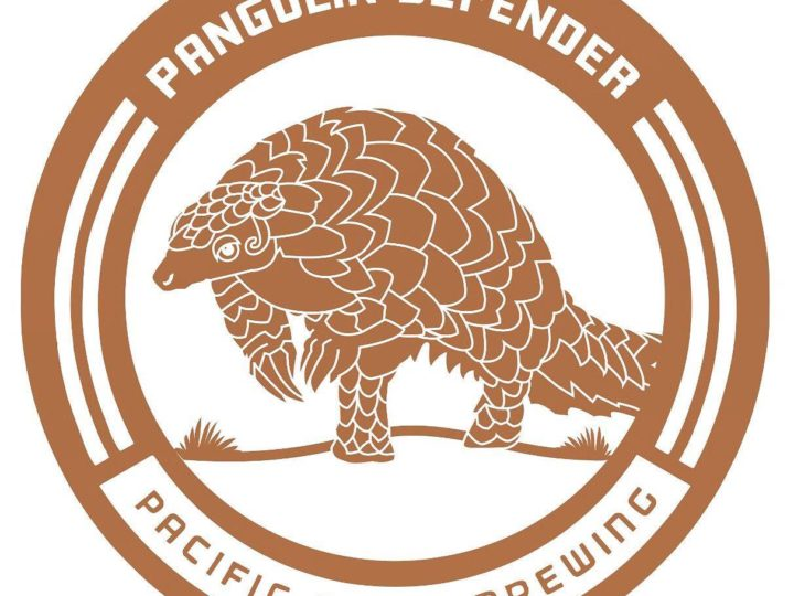 Pangolin Conservation Beer Release!