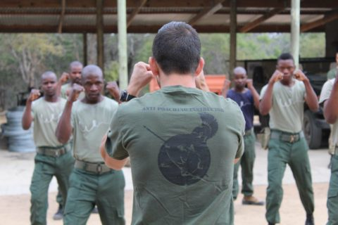 GCF instructor with back facing the camera leads rangers in martial arts training