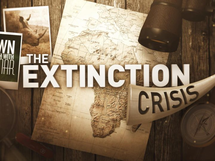 "Down to Earth with Dagmar – ""The Extinction Crisis"" – Rhino Conservation Documentary"