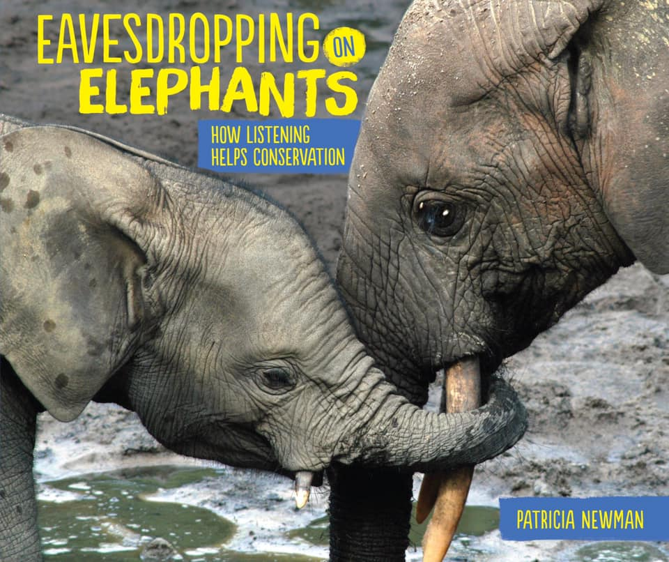 "Bookcover of ""Eavesdropping on Elephants"" by Patricia Newman"