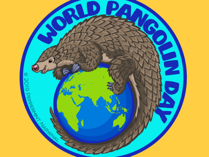 World Pangolin Day Events A Success! Thanks to you!