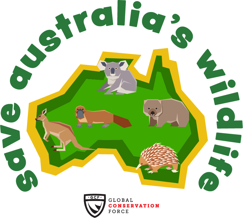 Australia in shades of green and yellow with a geometric koala, platypus, wombat, kangaroo, and