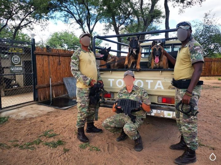 46 K9 Anti-Poaching Rangers Sponsored With Gear In The First Quarter Of 2020
