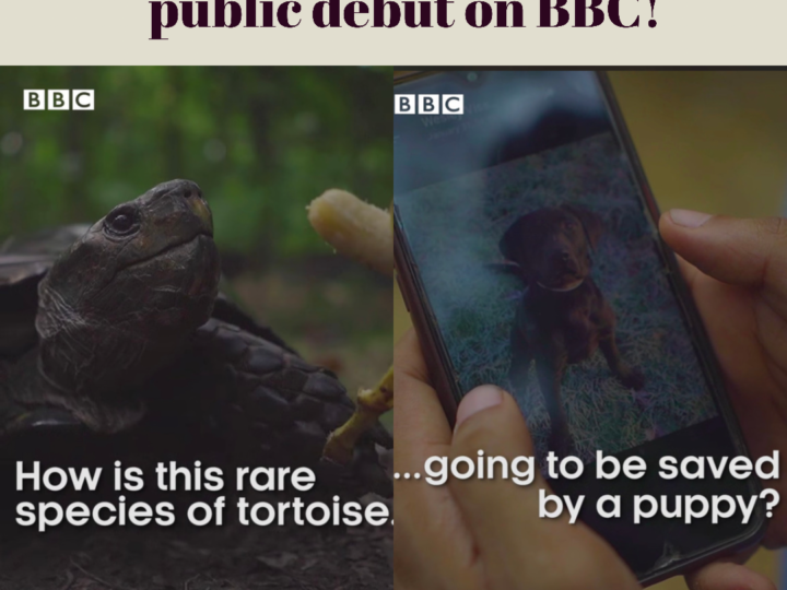 Global Conservation Force's K9, Clive, Makes His Debut On BBC
